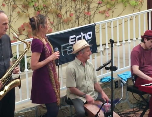 Wine Bar 107 – Echo Fabric Live