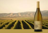 Santa Lucia Highlands Chardonnay