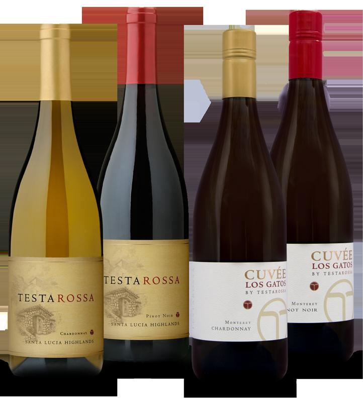 Bottles of testarossa wines
