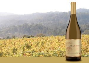 Santa Cruz Mountain bottle and vineyard image