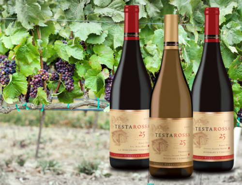 Fall Single Vineyard Releases