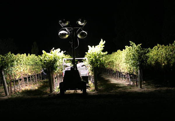 Graham Family Vineyard at night