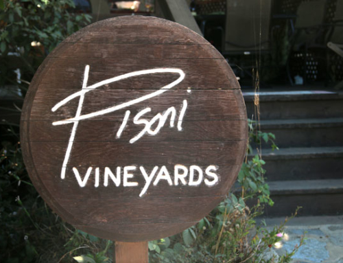 The Pisoni Vineyard