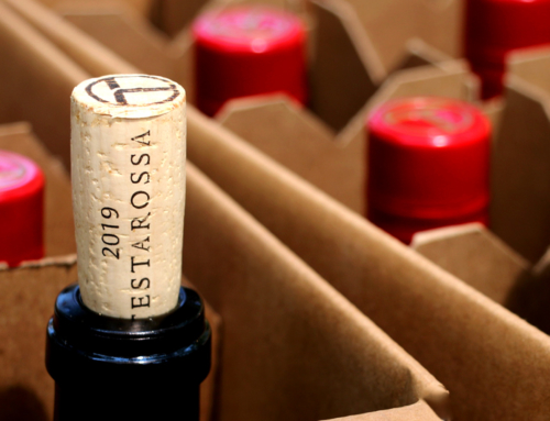We Tested Wine Preserver Systems So You Don't Have To