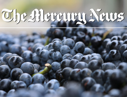 Mercury News – Testarossa Expects Quality Over Quantity